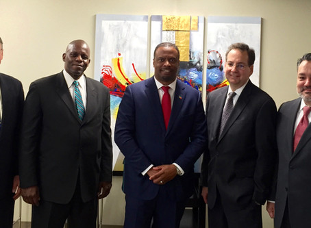 Nevis project team meets in NYC