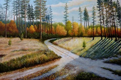 Перекресток лесных дорог