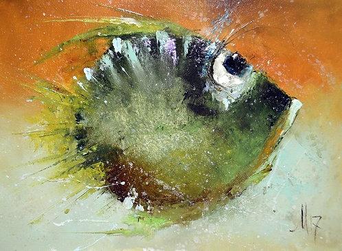 Аполитичная рыбка