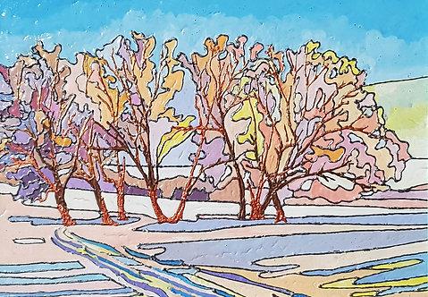 Радужная зима