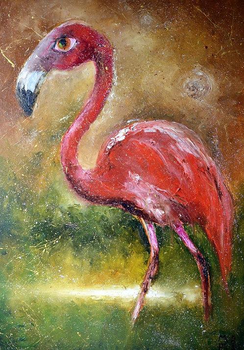 Созвездие Фламинго