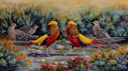 Турнир (золотые фазаны)