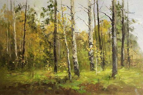 Лес. Октябрь