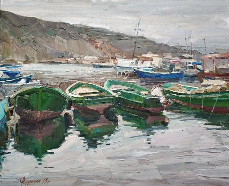 Зеленая флотилия