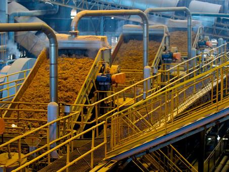 Nova política de biocombustíveis