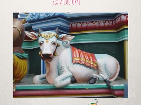 O Papel Sagrado da Vaca na Índia