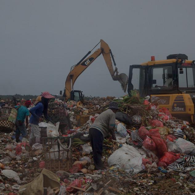 Bali - Dump -28.jpg