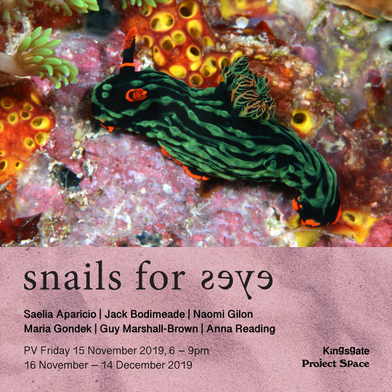Up next at KPS | snails for eyes
