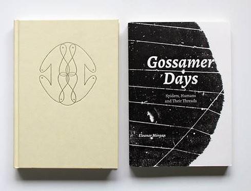 Gossamer Days: spiders, humans and their threads by Eleanor Morgan