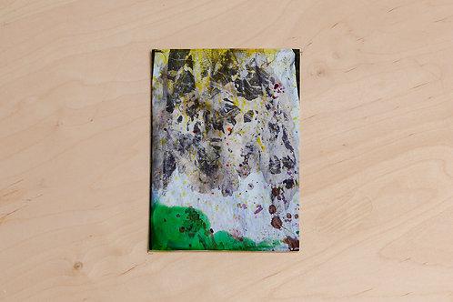 Jacqui Hallum, Ink on Digital Print