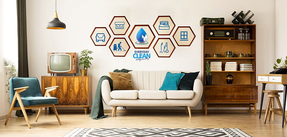 Professional Eco-Friendly Cleaninig Service