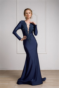 Long sleeve fitted dress with front embellishment and fitted skirt.