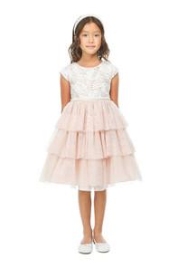 Little girl dress with ruffle skirt