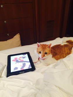 Exploring my artistic side with Paint for Cats on my iPad.