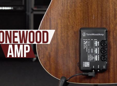 Tonewood Amp: la prova
