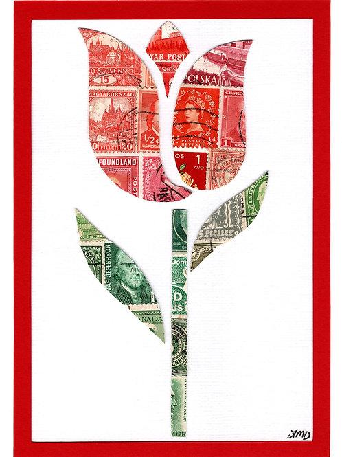 Tulip 5x7