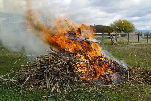 burn pile.jpg