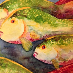 Watercolor Originals or Giclee Prints?