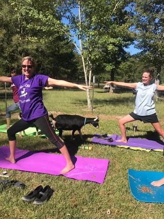1st Goat Yoga Class!