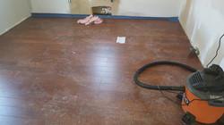 Bayshore New Floor