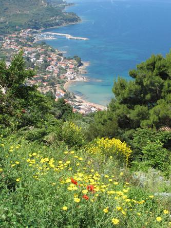Von Capri bis nach Sapri mit Abfahrt von San Marco
