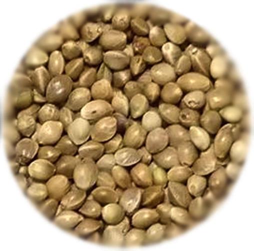 HanMa Hemp Seeds