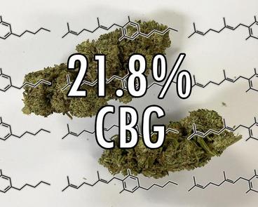 21.8% CBG
