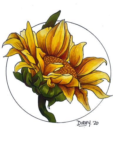 yellowsunflower