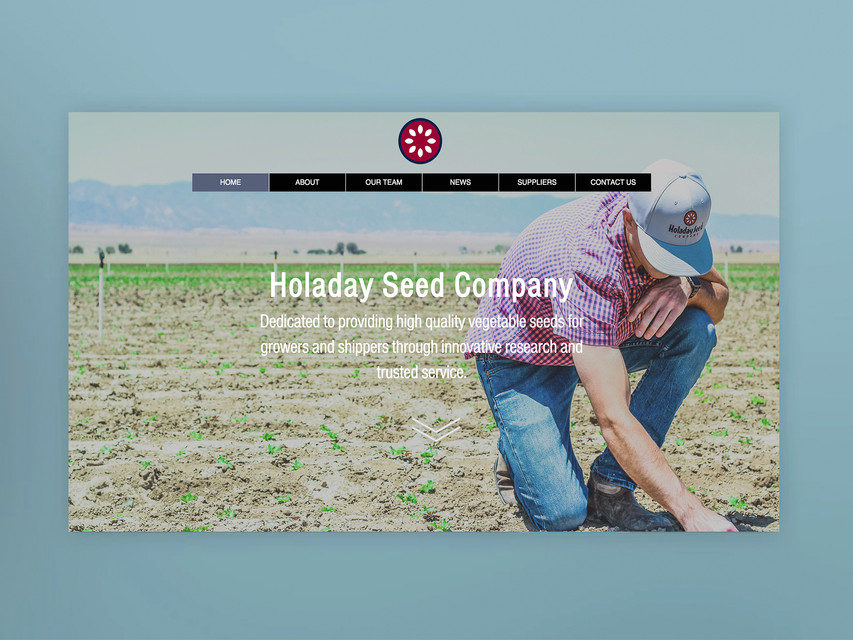 HOLADAY SEED CO