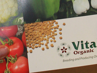 Vitalis Organic Seeds Publishes New Catalogue