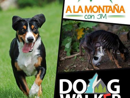 Caminata Canina, juntos a ayudar