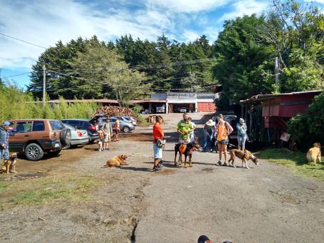 Fotos DogWalkerCR Hiking 14 Mayo