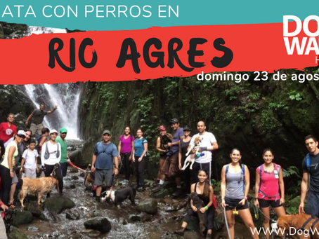 DogWalkerCR Hiking Río Agres y Catarata