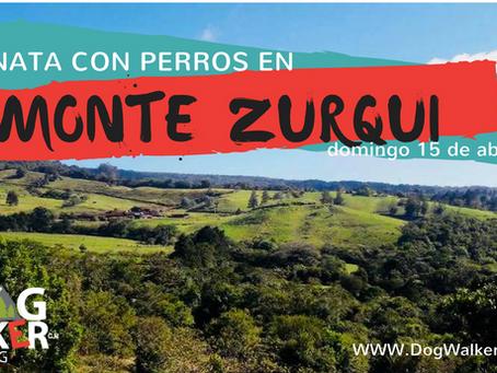 DogWalkerCR Hiking Monte Zurquí