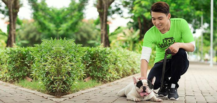 Paseador y perro