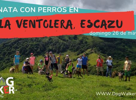 DogWalkerCR Hiking 26 mayo - La Ventolera.