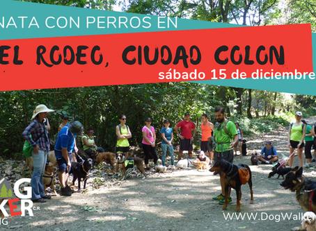 DogWalkerCR Hiking 15 diciembre El Rodeo