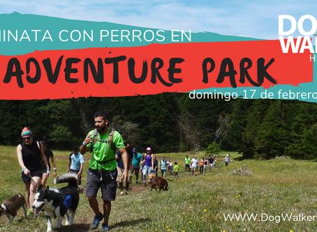DWCR Hiking 17 febrero Adventure Park