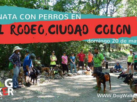 DogWalkerCR Hiking 20 mayo