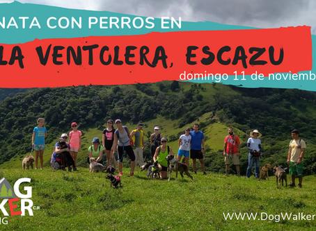 DogWalkerCR Hiking 11 noviembre - La Ventolera.