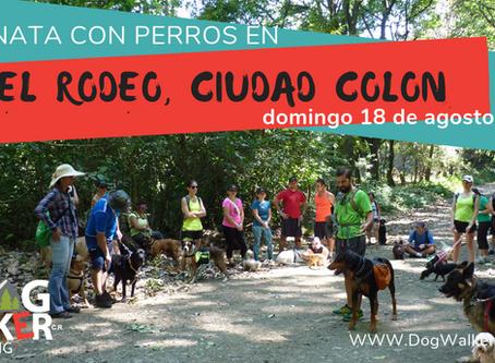 DogWalkerCR Hiking 18 agosto El Rodeo
