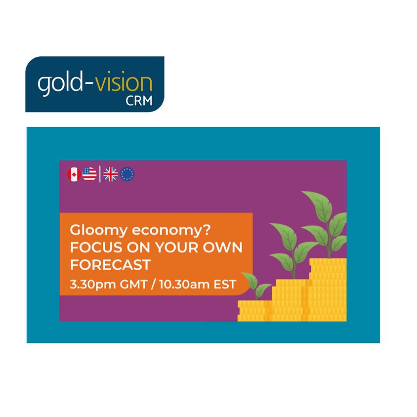 Gloomy economy? Focus on your own forecast - Gold-Vision webinar