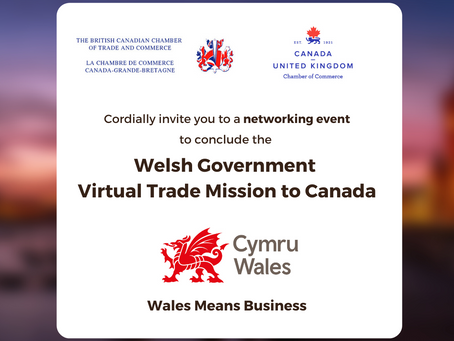 Welsh Government Virtual Trade Mission Networking event