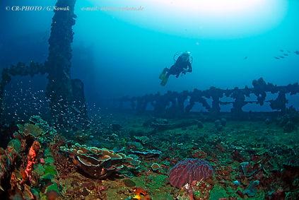 Deck shipwreck World War 2, Kyokuzan Maru, WWII, Palawan, Philippines