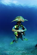 Turtle and diver underwater, Palawan, Philippines