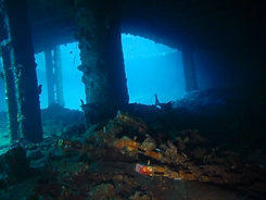 Kyokuzan Maru Shipwreck, Palawan, Philippines