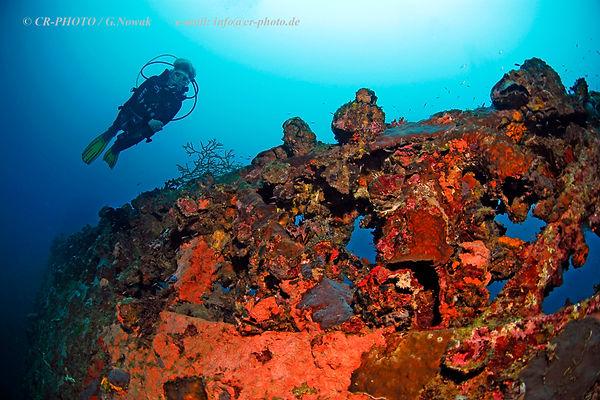 Diver on shipwreck Kyokuzan Maru, Busuanga, Palawan, Philippines