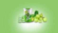foodisha-type-2-slider-amla.webp