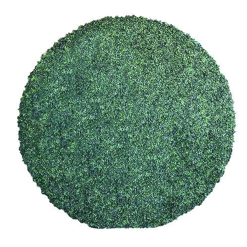 CIRCLE GRASS 8x8