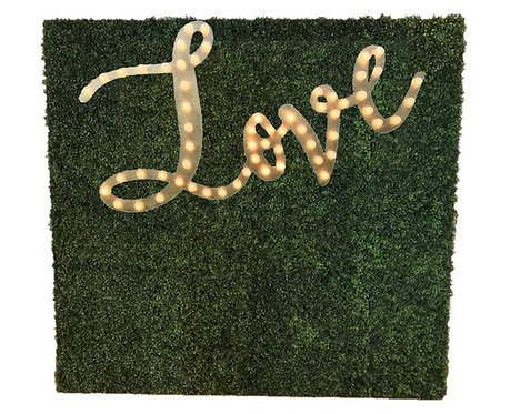 LOVE MARQUEE GRASS wall (8x8)